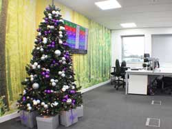 Purple & white Christmas tree in office
