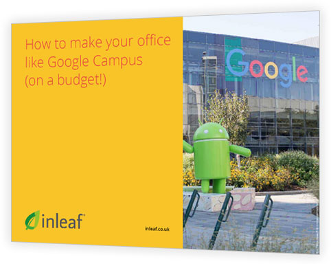 How to make your office like Google Campus (on a budget!)