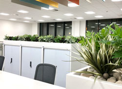 Artificial plants for storage