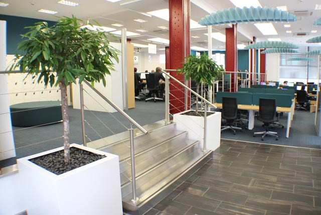Feature tree displays in Manchester office