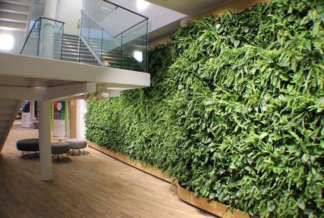 Living walls Watford