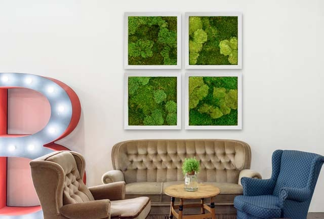 Moss Walls Pictures O Inleaf