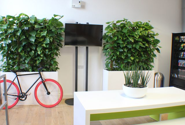 Divider office planters