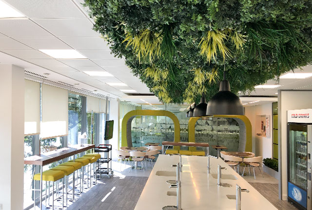 Green wall attached to office ceiling