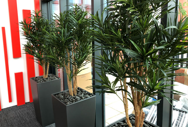 Trio of large artificial office plants