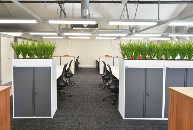 Plants for office storage unit